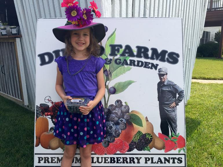 DiMeo Farms & Blueberry Plants Nursery - Buy New Jersey Blueberries direct from our family blueberries farms in New Jersey. Kids love picking berries at DiMeo's Pick Your Own Fruit Farms in NJ. CALL: (609) 561-5905