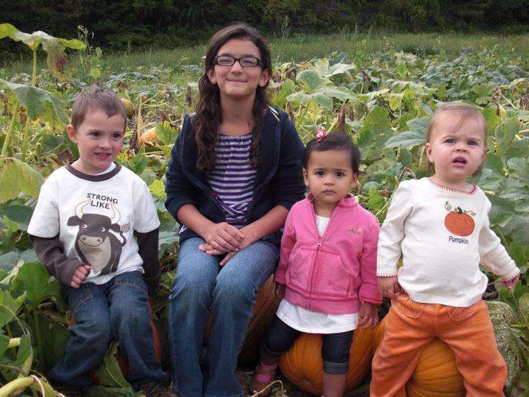 Harvest Valley Farms - Little pumpkin pickers