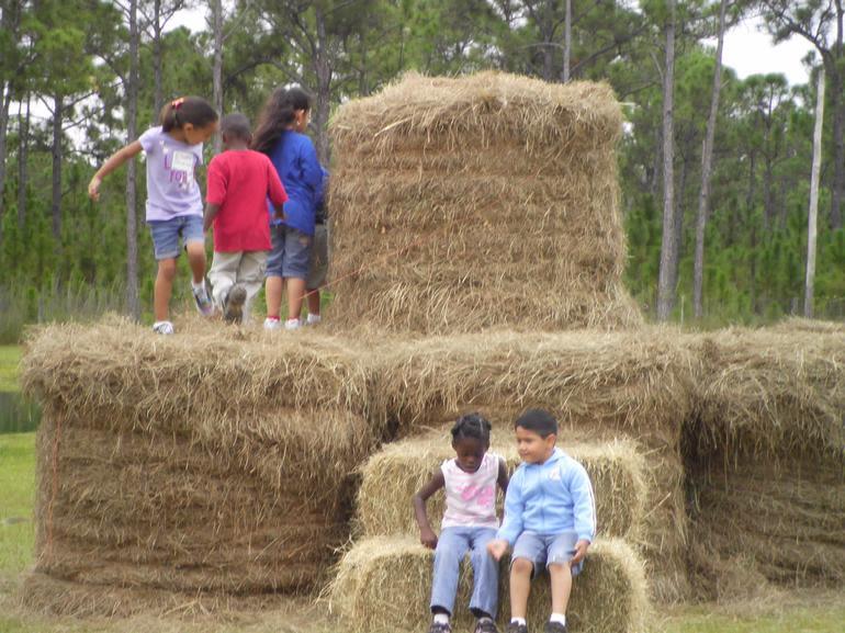 Carousel Party Acres - Hay Mountain