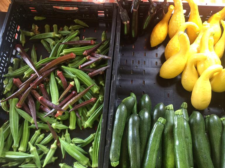 The Farmers' Daughter - Okra, zucchini, and yellow squash