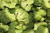 Meadow Mist Farm - Broccoli
