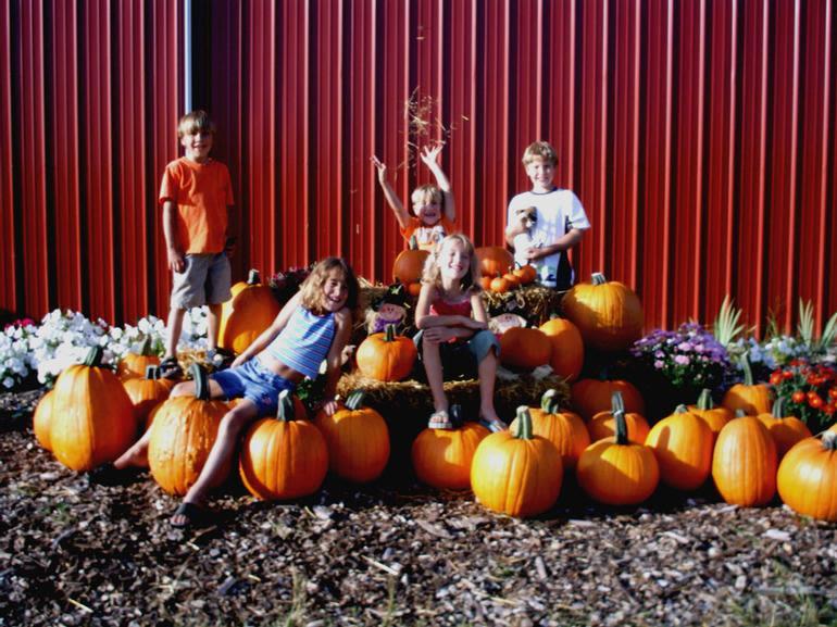 A.W. Overhiser Orchards - Kids at Pumpkin Harvest Time