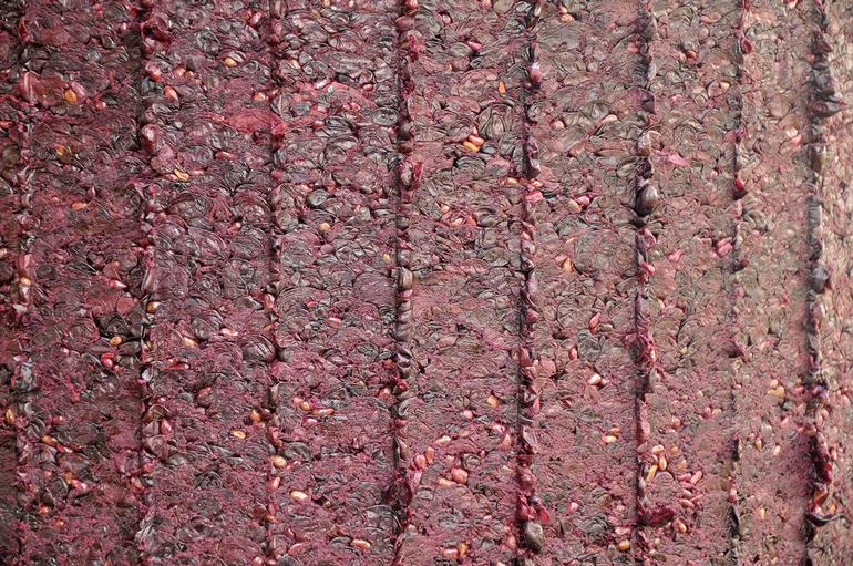 Zoll Cellars Winery - Pressed Grapes
