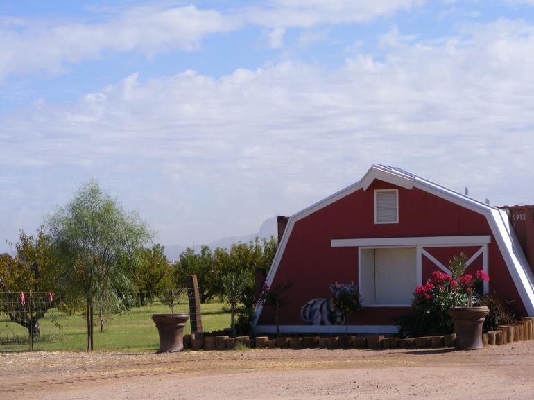 Vertuccio Farms - Image 0