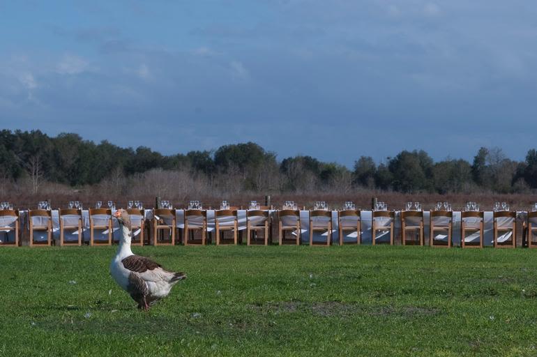Lake Meadow Naturals, LLC - Outstanding in the field dinner jan 2013