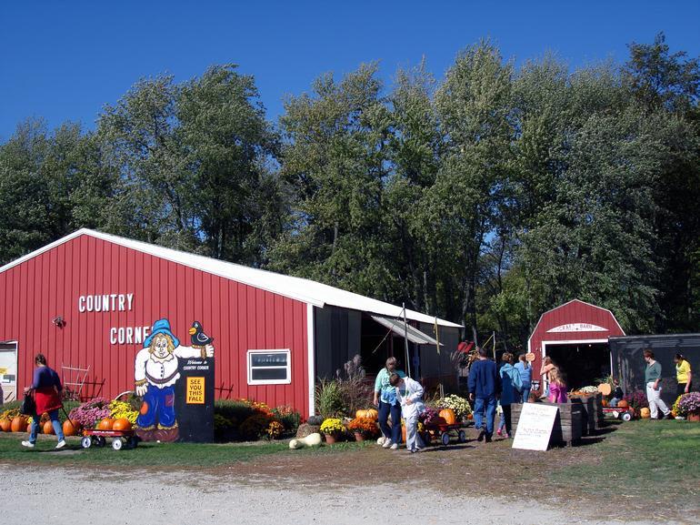 Country Corner Farm Market & Pumpkin Patch - Image 0