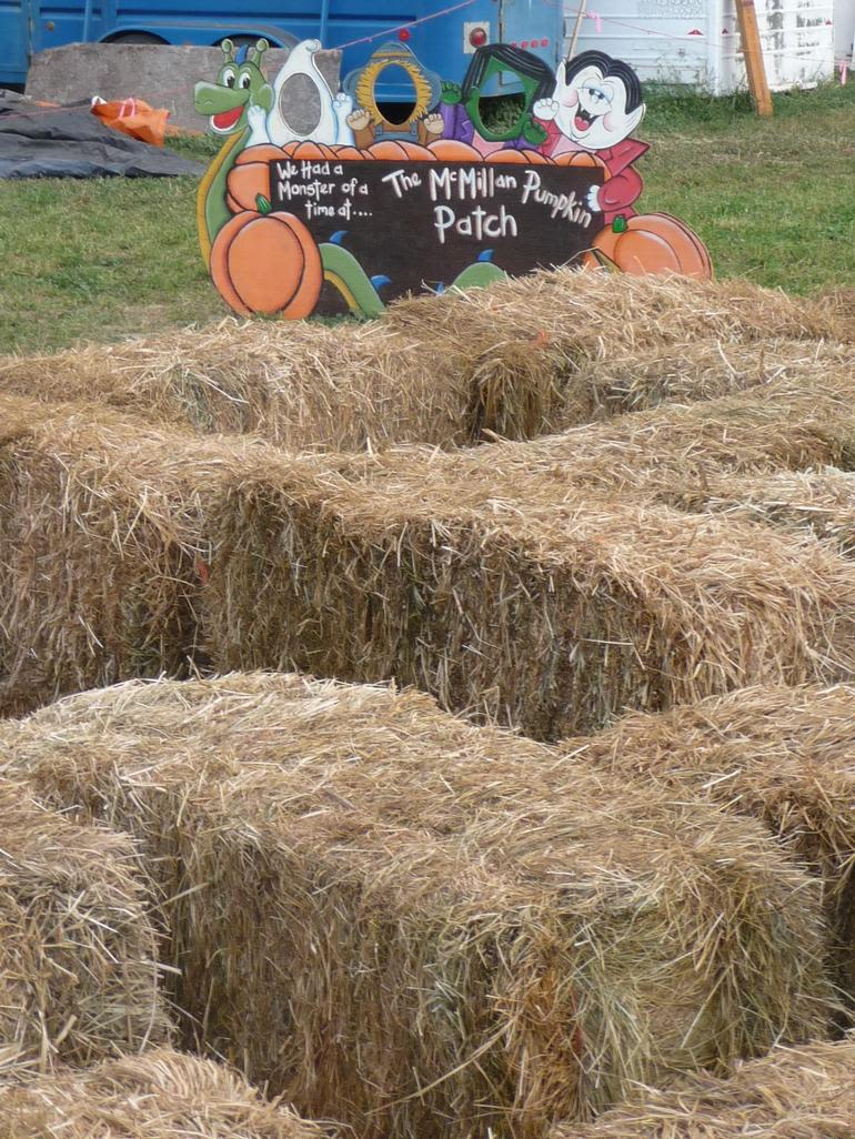 McMillan Farms - Our haymaze and cutouts.