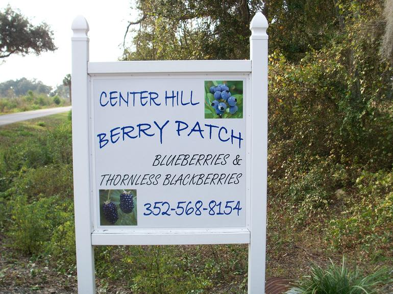 Center Hill Berry Patch - Image 0
