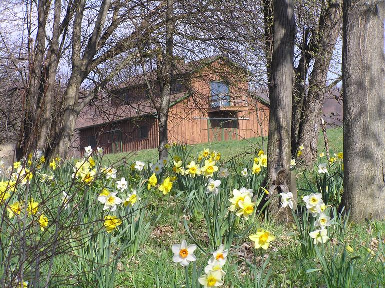 Sojourner Farms LLC - Barn pix in spring