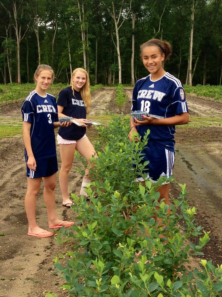 DiMeo Farms & Blueberry Plants Nursery - Picking Blueberries at Hammonton Blueberry Farms by DiMeo's Pick Your Own Blueberry Farms and Blueberry Plant Nursery, US Soccer Club girls team loved picking DiMeo blueberries, give us a call to schedule an appointment now: (609) 561-5905