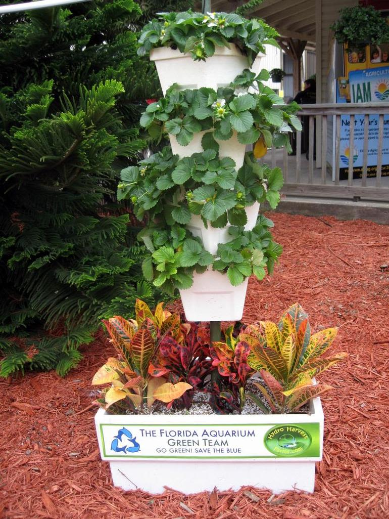HYDRO HARVEST FARMS - Green Thumb Garden only $100.00 everything included