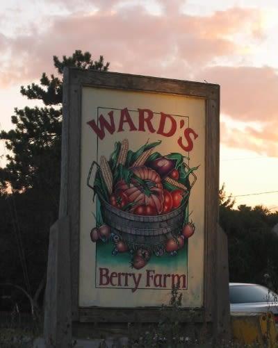 Ward's Berry Farm - Image 1