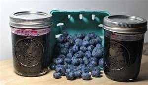 Hollisaja Farm - Blueberry Jam