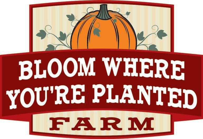 Bloom Where You're Planted Farm & Pumpkin Patch - Watch for signs with our logo!