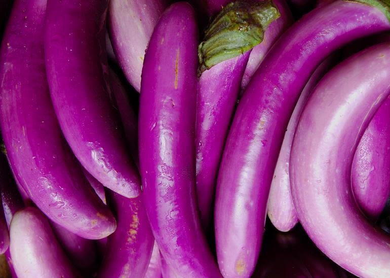 Meadow Mist Farm - Japanese Eggplant At MMF