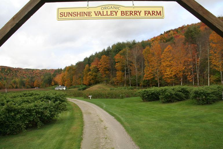 Sunshine Valley Berry Farm - The entrance to the berry farm, just off of Route 100