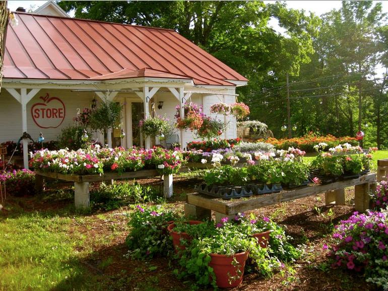 Mendon Mountain Orchards & Motel - Image 1