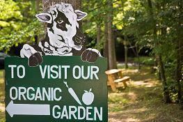 Enota Organic Farm - Image 0