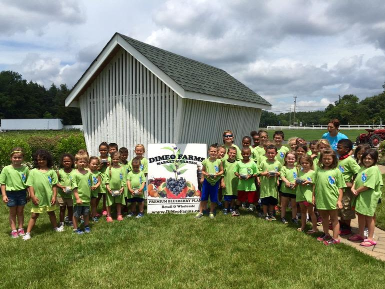 DiMeo Farms & Blueberry Plants Nursery - Blueberry Picking in South Jersey with Children's Summer Camp at DiMeo's Pick Your Own Blueberries Farm in New Jersey. CALL: (609) 561-5905 to schedule. Families and kids love DiMeo Farms blueberries and our gorgeous family farm in Hammonton.