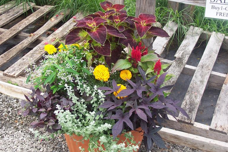 Brick House Acres - Custom planter