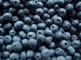 Hollisaja Farm - Fresh picked blueberries