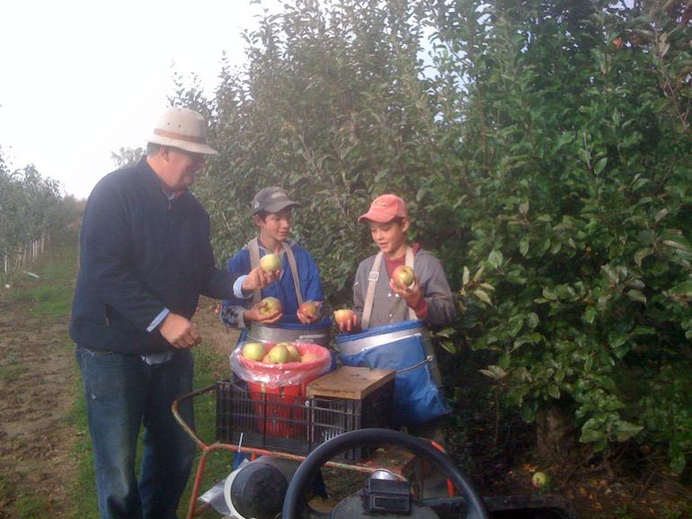 Brus' Orchards & Winery - Picking the apples on Thanks Giving Day