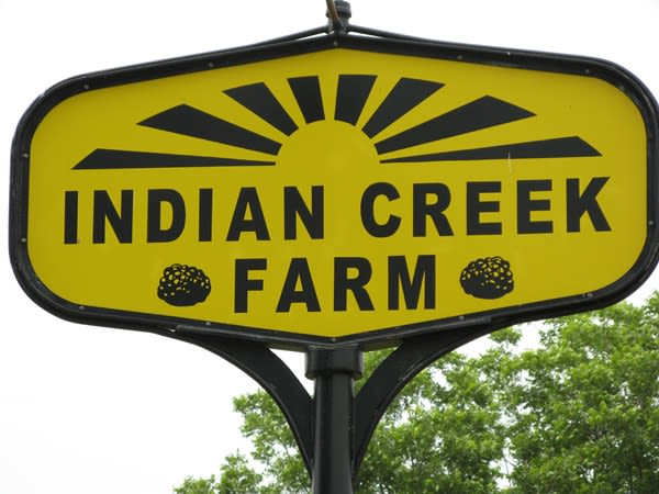Indian Creek Farm - Image 3