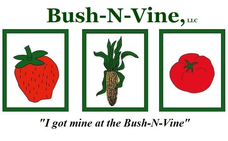 Bush-N-Vine Farm - Bush-N-Vine Farm in York, SC. Growing fresh fruits and vegetables since 1979.