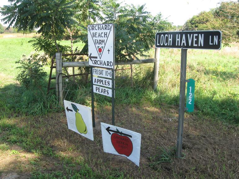 Orchard Beach Farm - Image 3