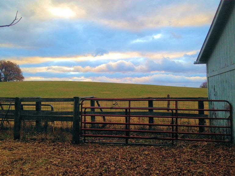 White Stone Farms - Image 0