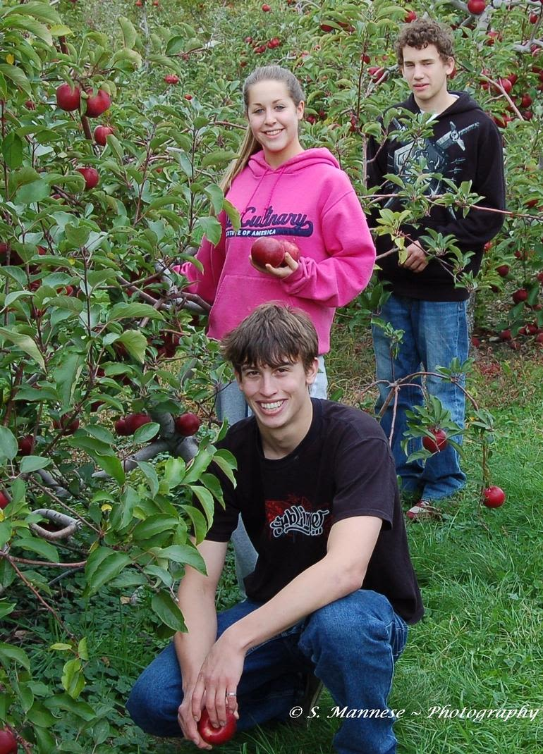 Prospect Hill Orchards-Apples - Image 0
