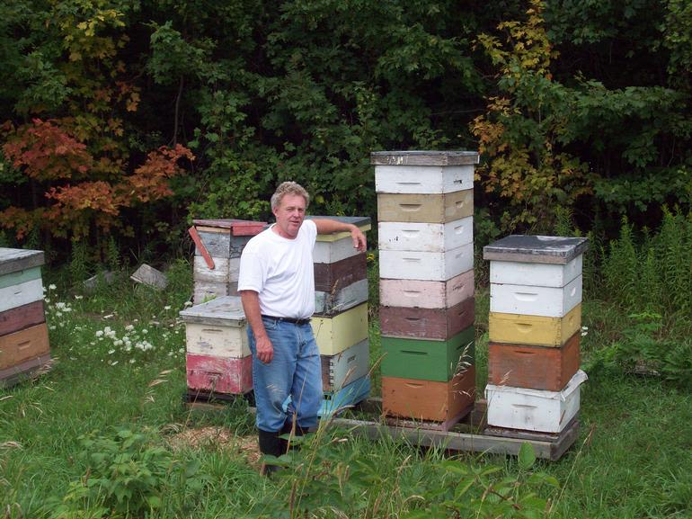 Dickey Bee Honey Inc - Peter @ the Bee Yard - working on the bees !!!