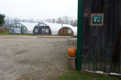 Enterprise Farm - Our Food Shed is just around this corner. Park between the barn and the road.