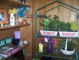 Noble's Farm Stand and Flower Shop - Image 1
