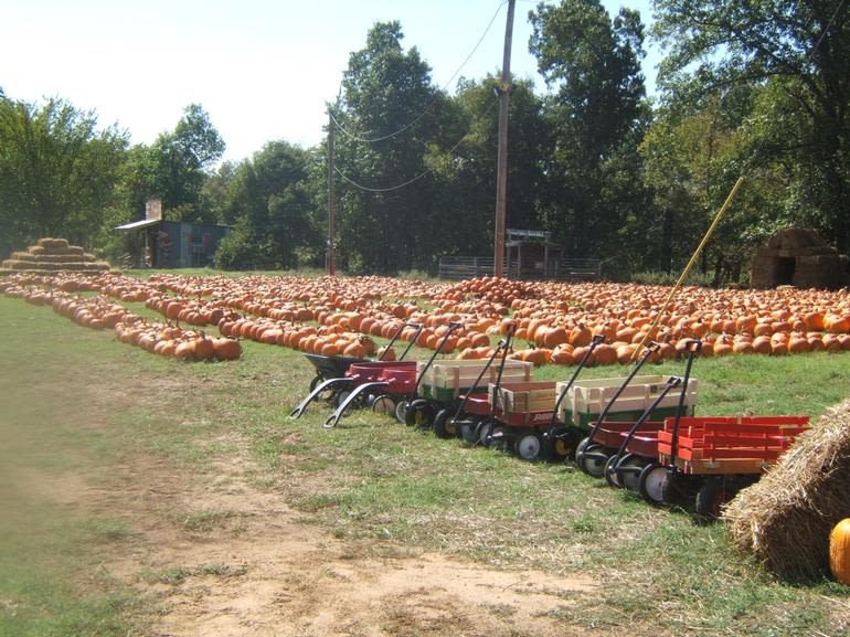 Pleasant Valley Farms - Image 1