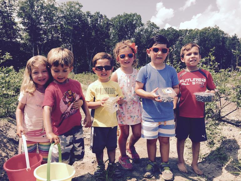 DiMeo Farms & Blueberry Plants Nursery - Blueberries Picking in South Jersey at DiMeo's U-Pick Berry Farms in New Jersey. KIDS LOVE IT HERE AT DIMEO FARMS. CALL: (609) 561-5905 to buy the best fruit trees direct from DiMeo's Fruit Farm
