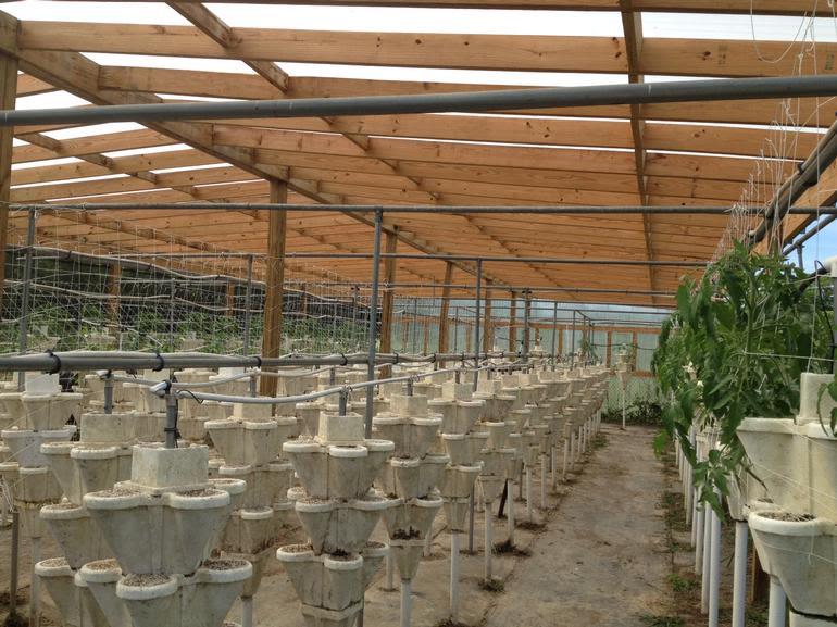 Barber Berry Farm, LLC - Hydroponic garden