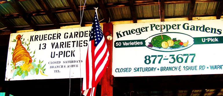 Krueger Family Peppers And Produce - Image 0