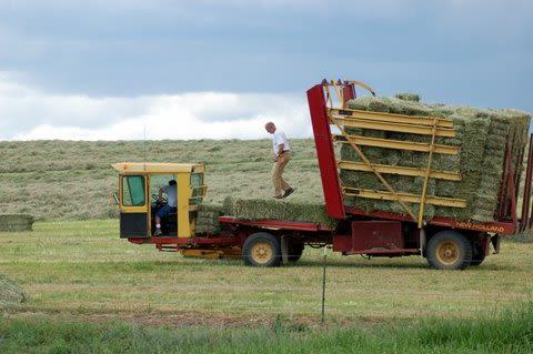 Windy N Ranch - Image 13