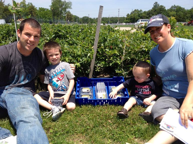 DiMeo Farms & Blueberry Plants Nursery - DiMeo Farms memories with families who love DiMeo Blueberry Farms in New Jersey (Hammonton) only $1.66 per blueberry pint Come out to pick blueberries and bring home some blueberry plants so you can grow your own blueberries with expert blueberry growing advice: (609) 561-5905