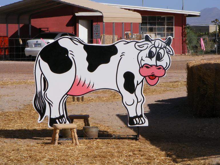 Vertuccio Farms - Image 1