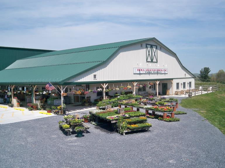 Hollabaugh Bros., Inc. - Our newly constructed farm market features all of our home-grown fruits and vegetables, an in-house bakery, hand-dipped ice cream, an educational classroom for tours and classes, local meats, and a plethora of jarred and canned goods, gourmet food items, and unique gifts. While our hours change seasonally, we are open year round!