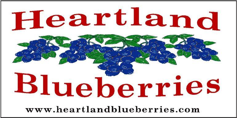 Heartland Blueberries - Image 0