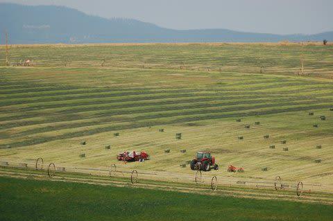 Windy N Ranch - Image 8