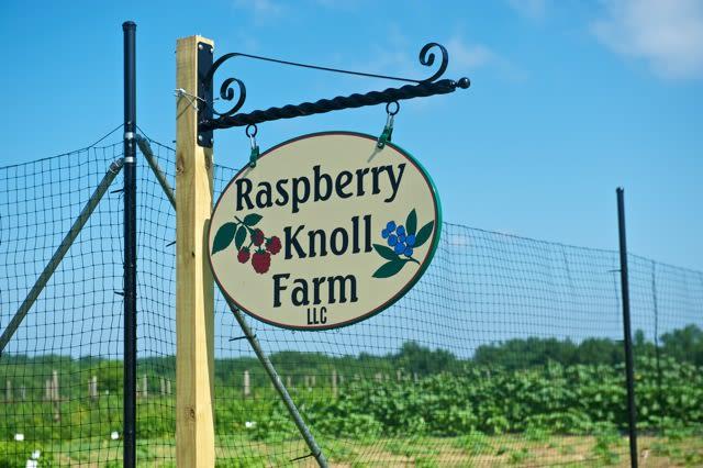 Raspberry Knoll Farm - Farm Entrance Sign