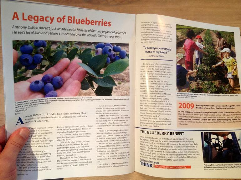 "DiMeo Farms & Blueberry Plants Nursery - DiMeo Farms continues Great-Grandpop DiMeo's 100 year-old legacy of growing ""the best tasting"" blueberries and Non-GMO, NATURALLY GROWN, Heirloom blueberry plants so you can can grow your own organic blueberries at home in your backyard."