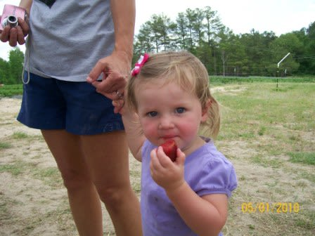 Karefree Produce - This little one became a regular customer our first year.