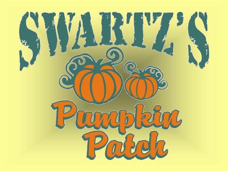Swartz's Pumpkin Patch - Serving our neighbors for 14 years, we offer pre-picked or u-pick strawberries and black raspberries, sweet corn, tomatoes, 8 different kinds of pumpkins plus many more vegetables.  Come see our home farm, or visit us Saturdays (May thru Oct) on the square of Gettysburg at the Gettysburg Farmers' Market.  We are also on Facebook.