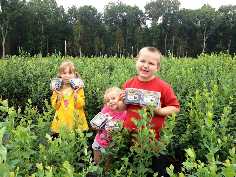 DiMeo Farms & Blueberry Plants Nursery - People love DiMeo Blueberry Farms & Berry Bushes Gardening Center where these kids came with they parents to buy Heirloom blueberry bushes direct from our blueberry plants nurseries dlr. in New Jersey