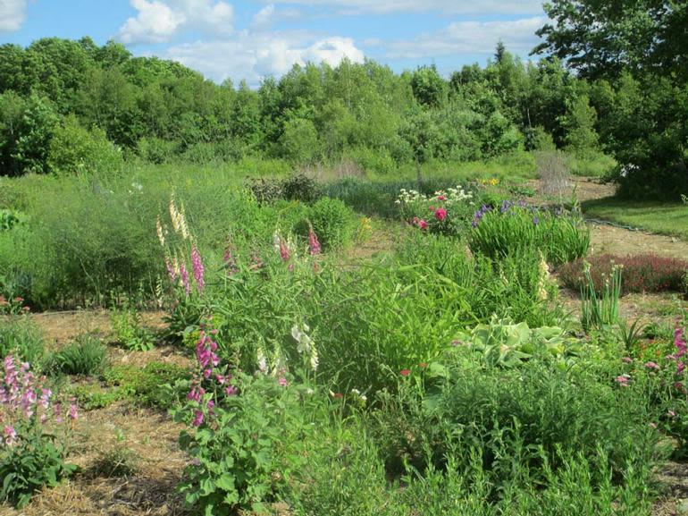 Beddington Ridge Farm - Image 1